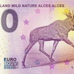 Suomi - Finland Wild Nature Alces Alces 2019-2